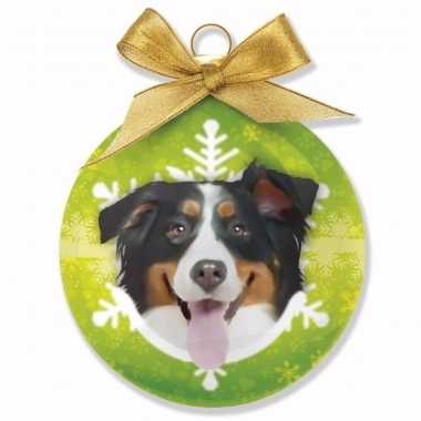 Plastic huisdieren kerstballen hondje berner sennen