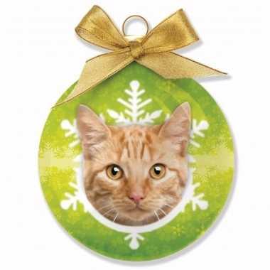 Plastic huisdieren kerstballen katje rode tabby