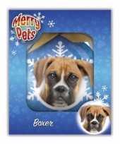 Plastic huisdieren kerstballen hondjes boxer